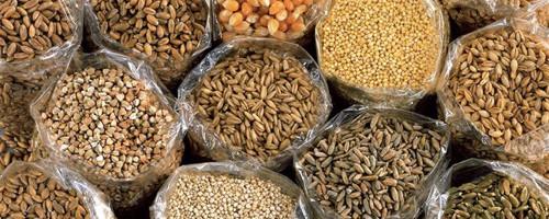 Cereali Senza Glutine: quali sono?