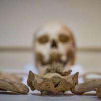 Già 2000 anni fa esisteva la celiachia, la scoperta in Toscana